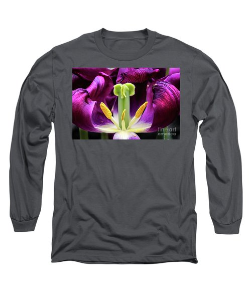 Purple Tulip Macro Long Sleeve T-Shirt by Darleen Stry