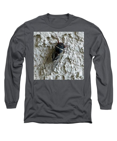 Long Sleeve T-Shirt featuring the photograph Putnam's Cicada by Anne Rodkin