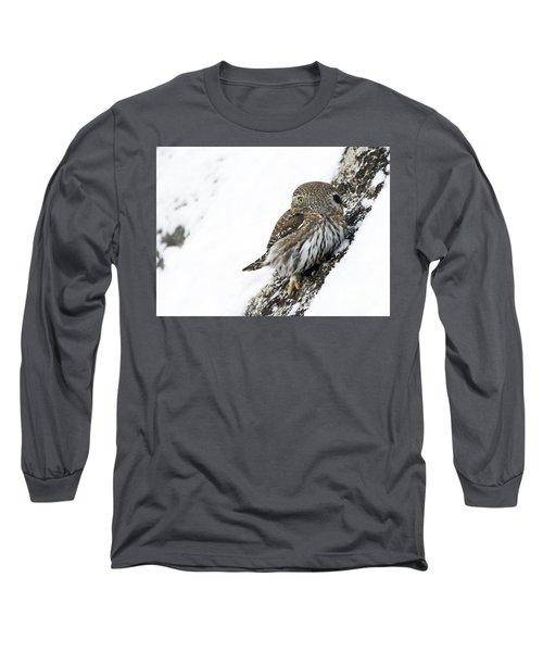 Pygmy Owl Long Sleeve T-Shirt