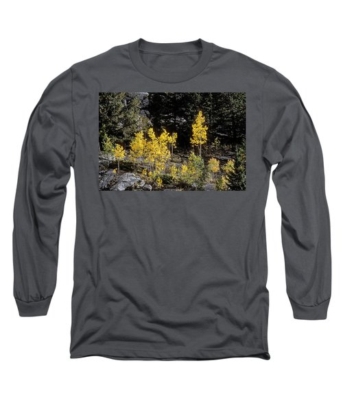 Aspens In Fall At Eleven Mile Canyon, Colorado Long Sleeve T-Shirt by John Brink