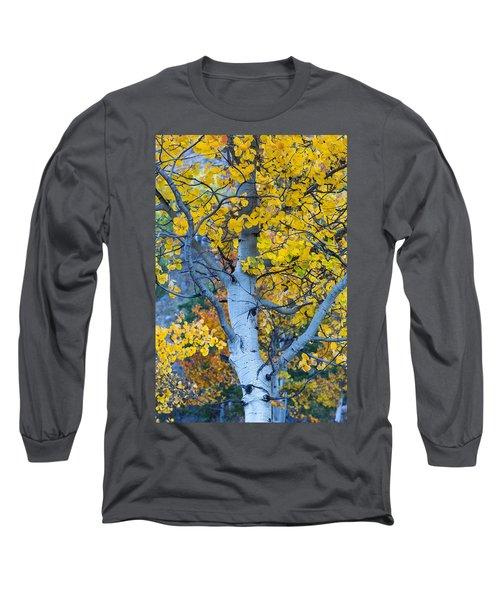Quaking Aspen Long Sleeve T-Shirt