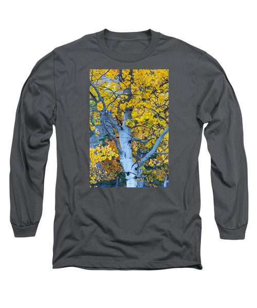 Quaking Aspen Long Sleeve T-Shirt