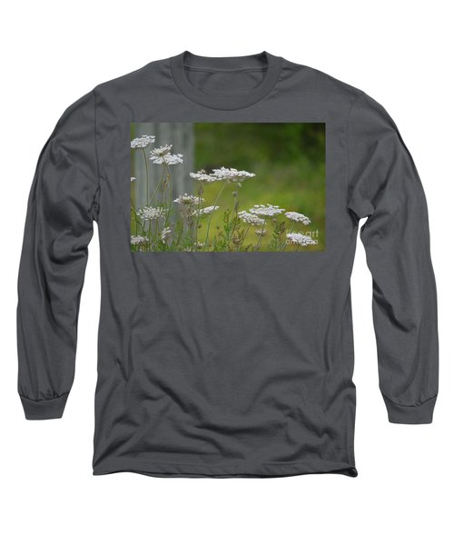 Queen Anne Lace Wildflowers Long Sleeve T-Shirt by Maria Urso