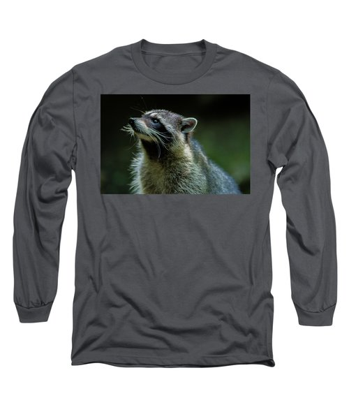 Raccoon 1 Long Sleeve T-Shirt