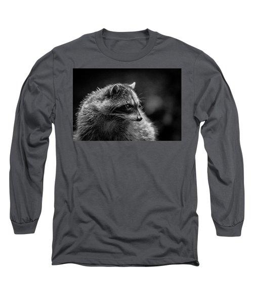 Raccoon 3 Long Sleeve T-Shirt