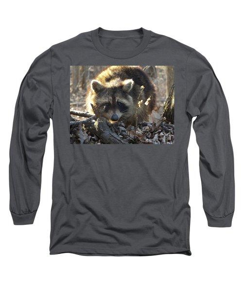 Raccoon Sunset Long Sleeve T-Shirt