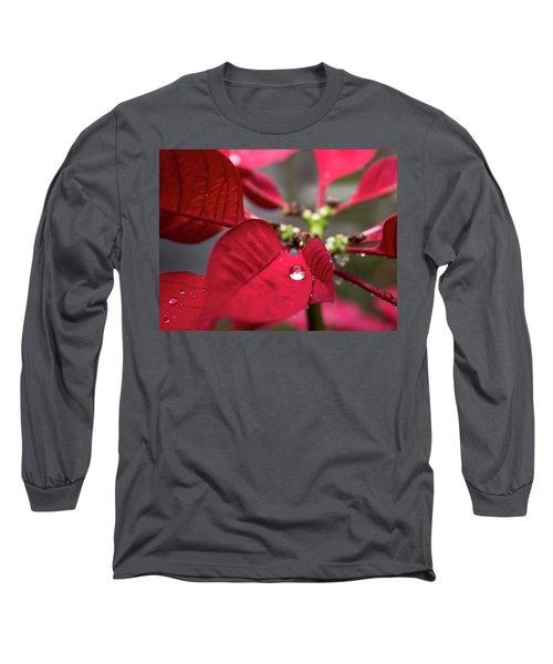 Rain Drop On A Poinsettia  Long Sleeve T-Shirt