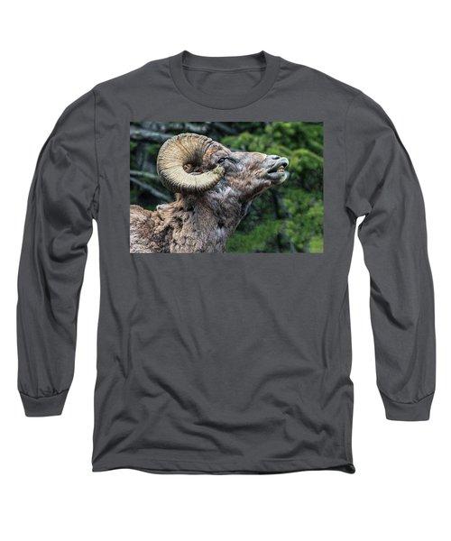 Ram Alert Long Sleeve T-Shirt
