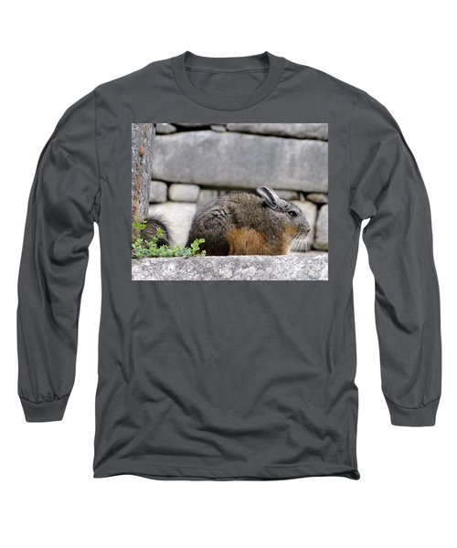 Rare Little Chincha Long Sleeve T-Shirt