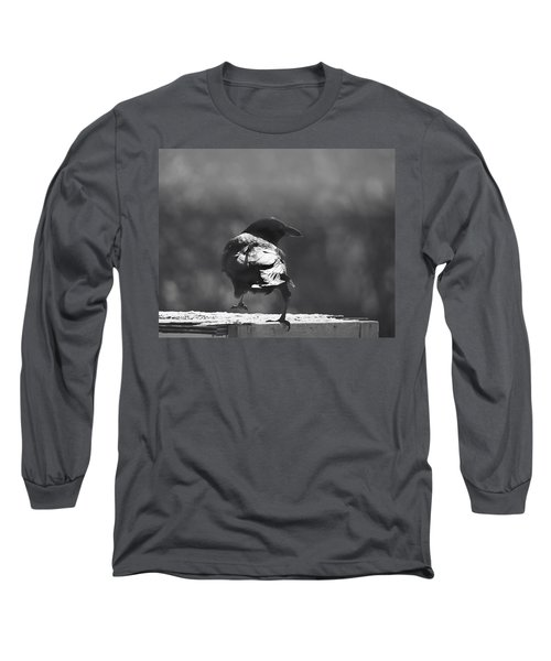 Long Sleeve T-Shirt featuring the photograph Raven In The Sun by Susan Capuano
