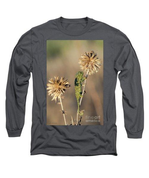 Long Sleeve T-Shirt featuring the photograph Reach High by Arik Baltinester