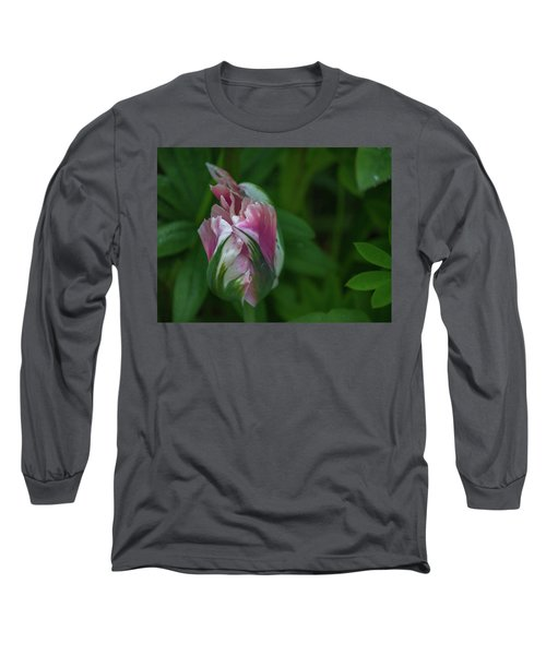 Red And White Bud 1 Long Sleeve T-Shirt by Timothy Latta
