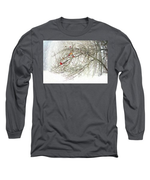 Red Bird Convention Long Sleeve T-Shirt