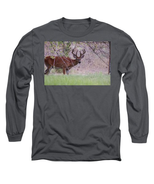 Long Sleeve T-Shirt featuring the photograph Red Bucks 2 by Antonio Romero