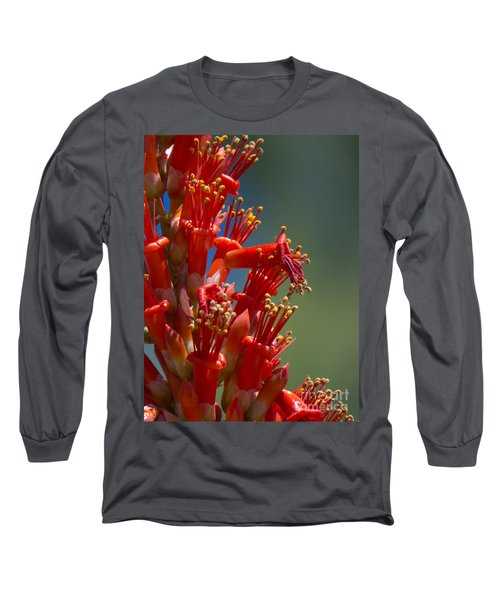 Red Cactus Flower 1 Long Sleeve T-Shirt