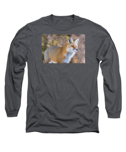 Long Sleeve T-Shirt featuring the photograph Red Fox In Winter Glow by Yeates Photography