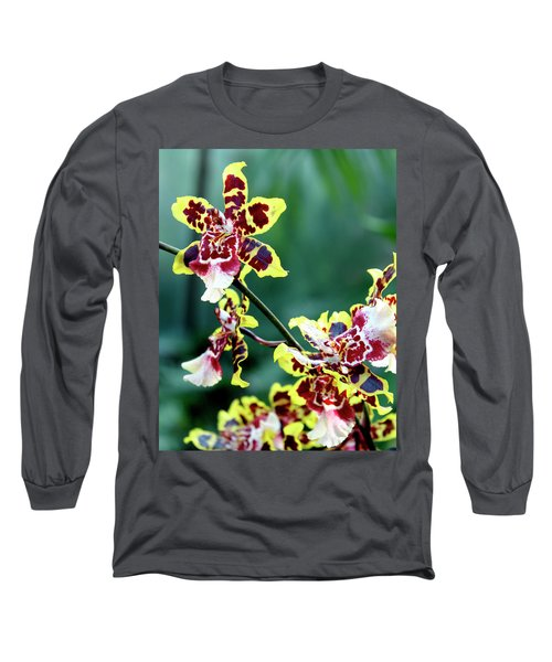 Striped Maroon And Yellow Orchid Long Sleeve T-Shirt