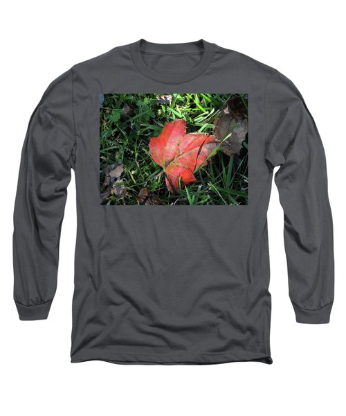Red Leaf Against Green Grass Long Sleeve T-Shirt by Michele Wilson