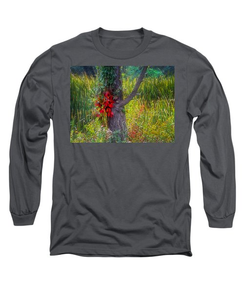 Red Leaves And Vines On Tree In Forest Of Reeds Long Sleeve T-Shirt by John Brink