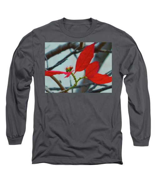 Red Leaves Long Sleeve T-Shirt by Beto Machado