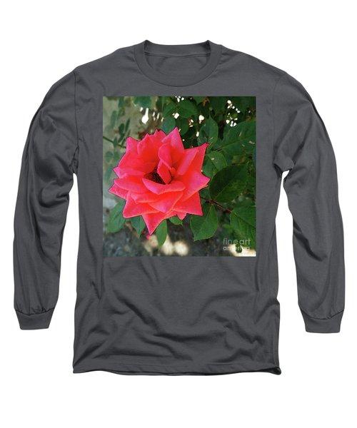 Pink Rose  Long Sleeve T-Shirt