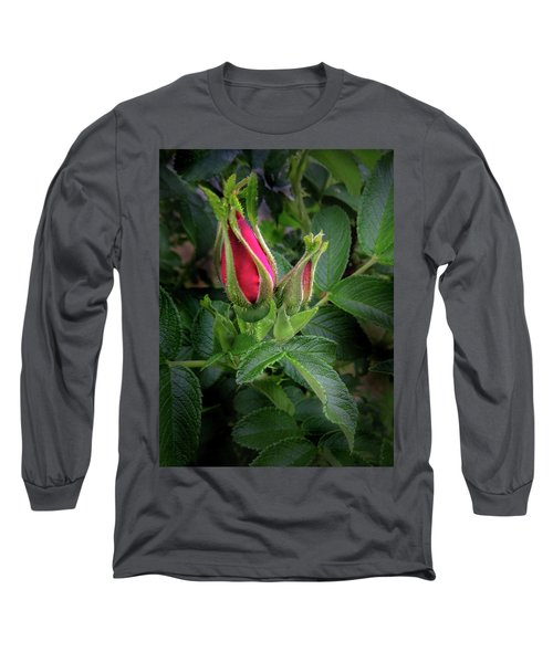 Red Rugosia Bud Long Sleeve T-Shirt