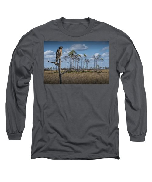 Red Shouldered Hawk In The Florida Everglades Long Sleeve T-Shirt