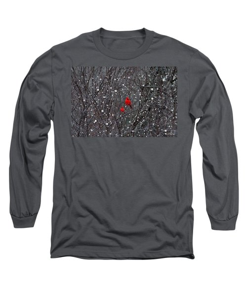 Red Snow Long Sleeve T-Shirt by Bill Stephens
