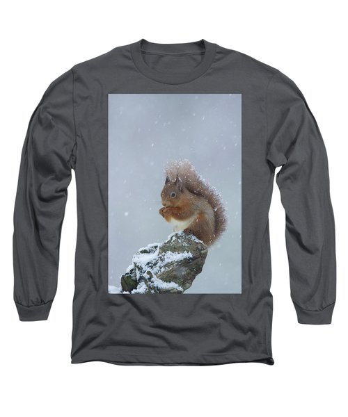 Red Squirrel In A Blizzard Long Sleeve T-Shirt