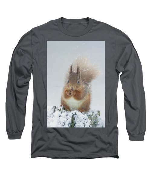 Red Squirrel With Snowflakes Long Sleeve T-Shirt
