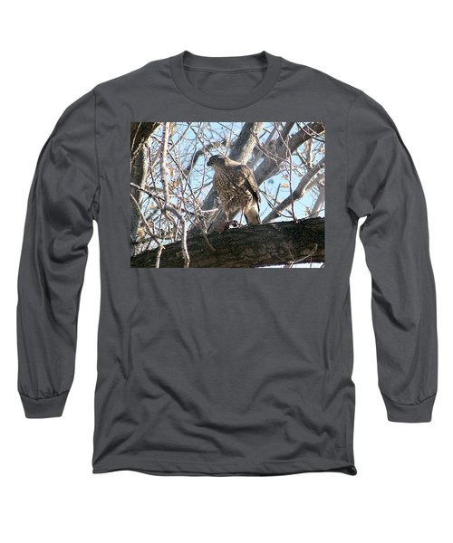 Red Tail Hawk Long Sleeve T-Shirt