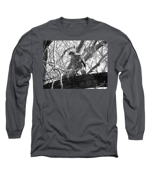 Red Tail Hawk In Black And White Long Sleeve T-Shirt