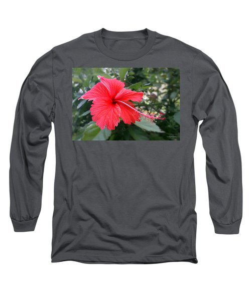 Red-tailed Flower Portrait Long Sleeve T-Shirt