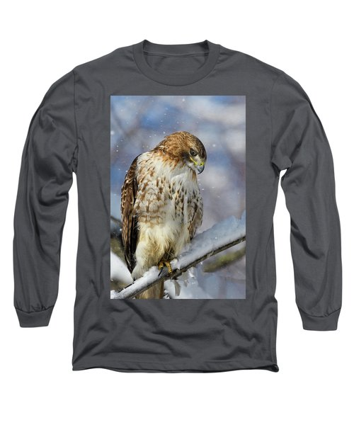 Red Tailed Hawk, Glamour Pose Long Sleeve T-Shirt