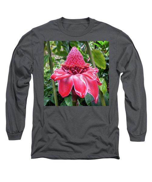 Red Torch Ginger Flower Long Sleeve T-Shirt