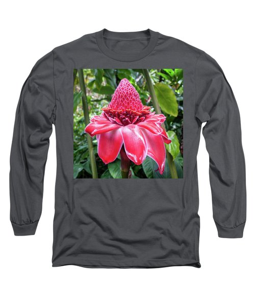 Red Torch Ginger Flower Long Sleeve T-Shirt
