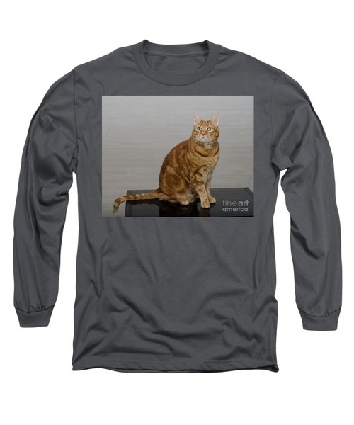 Red Tubby Cat Tabasco On Black Table Long Sleeve T-Shirt