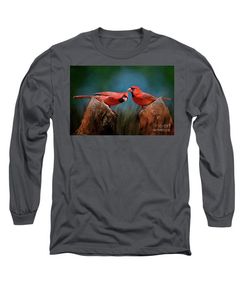 Redbird Sentinels Long Sleeve T-Shirt by Bonnie Barry