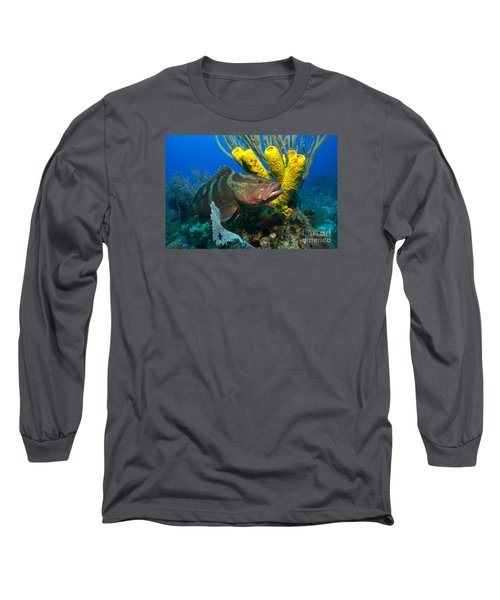 Long Sleeve T-Shirt featuring the photograph Reef Denizon by Aaron Whittemore