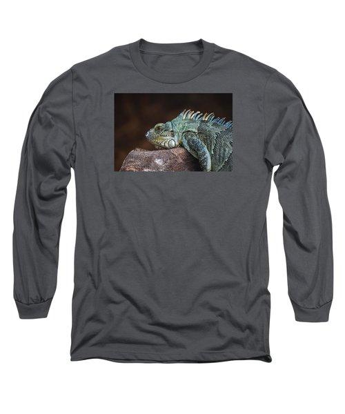 Reptile Long Sleeve T-Shirt by Daniel Precht