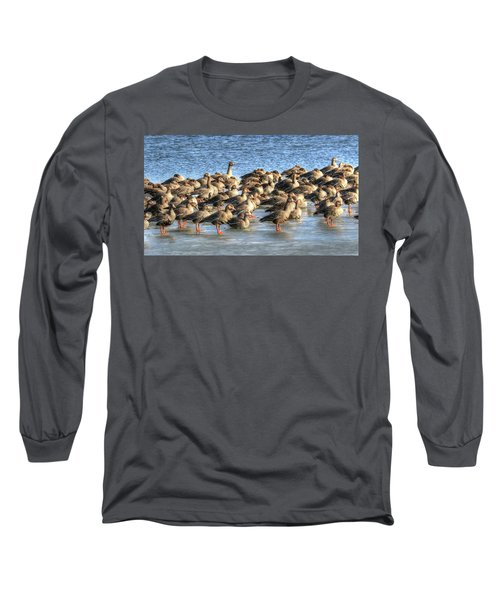Resting On Iowa Ice Long Sleeve T-Shirt