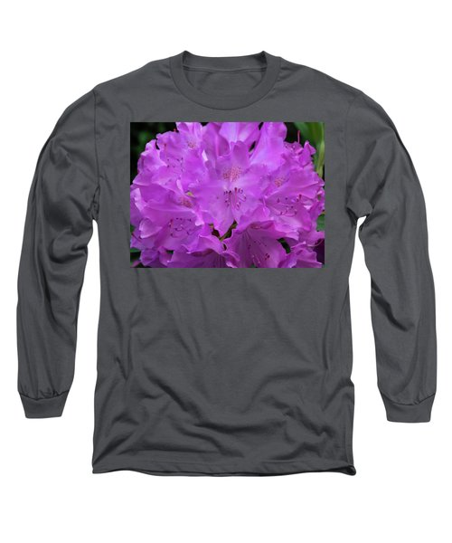 Rhododendron With Stamen And Stigma Long Sleeve T-Shirt