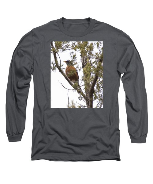 Long Sleeve T-Shirt featuring the photograph Robin On The Lookout by Laura Pratt