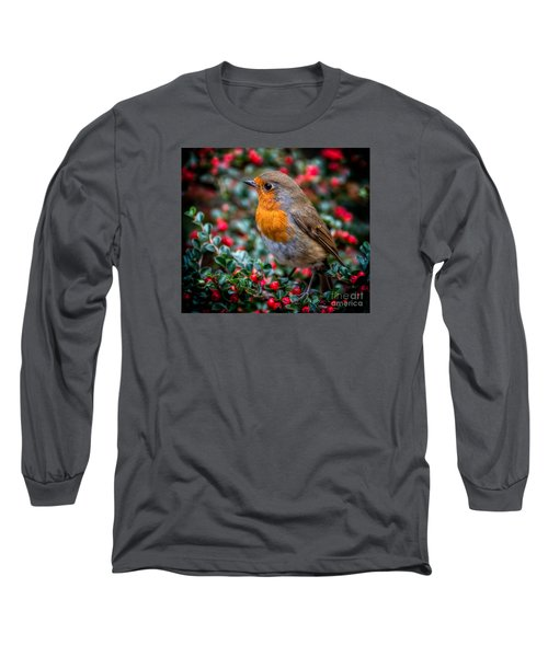 Robin Redbreast Long Sleeve T-Shirt