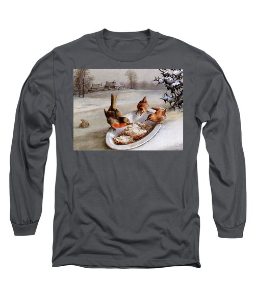 Robins And Wrens  Winter Breakfast Long Sleeve T-Shirt