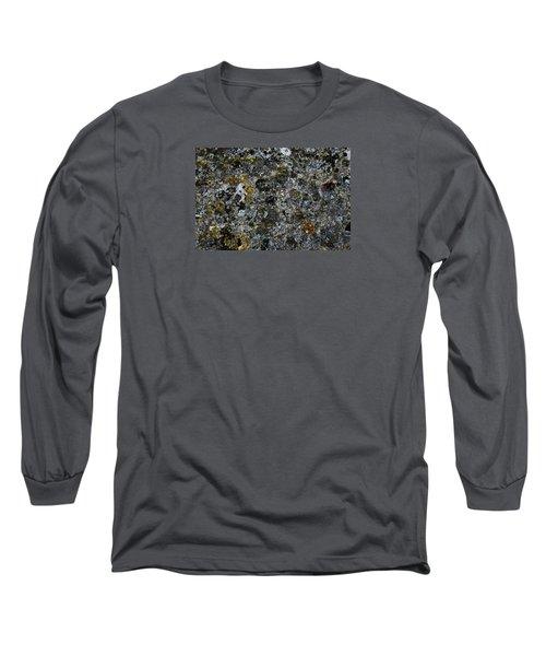 Rock Lichen Surface Long Sleeve T-Shirt by Nareeta Martin