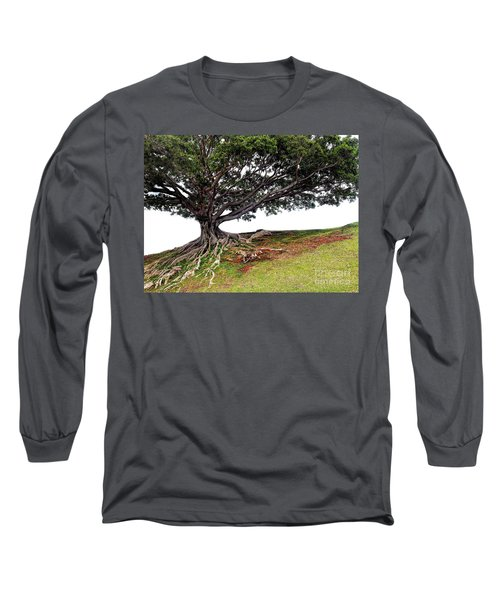 Long Sleeve T-Shirt featuring the photograph Roots Of Honolulu by Gina Savage