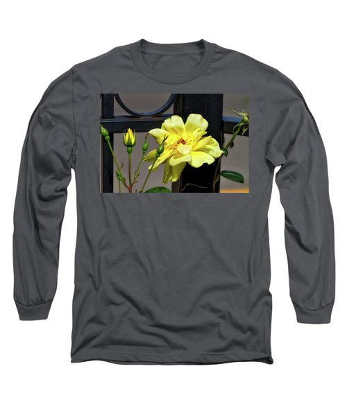 Rose On Wrought Iron Long Sleeve T-Shirt