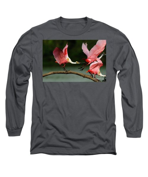 Rosiette Spoonbills Lord Of The Branch Long Sleeve T-Shirt by Bob Christopher