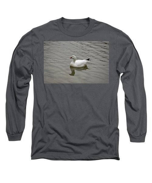 Long Sleeve T-Shirt featuring the photograph Ross's Goose by Sandy Keeton